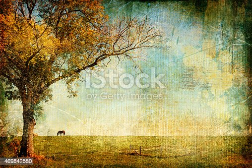 Artistic Toned Picture.Pictoresque View with Tree and Horse.