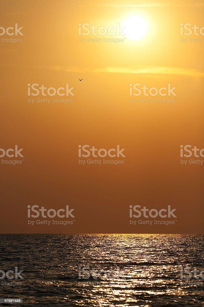 Golden Sunset sea royalty-free stock photo