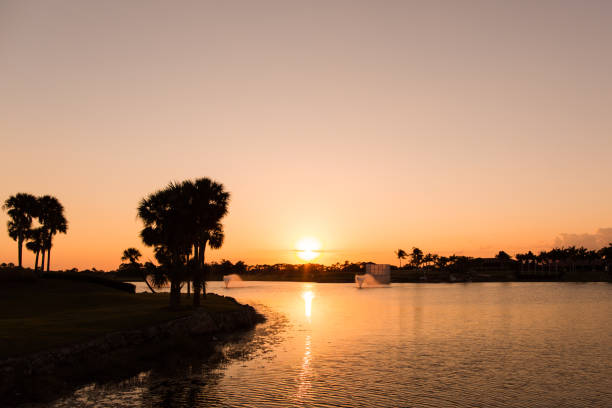 Golden Sunset Silhouette A golden sunset setting over a golf course in Palm Beach Gardens, Florida. With silhouettes of tropical palm trees. intercostal space stock pictures, royalty-free photos & images