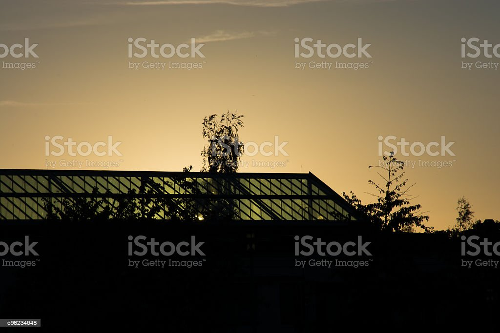 Golden Sunset With Glass Roof Silhouette foto royalty-free