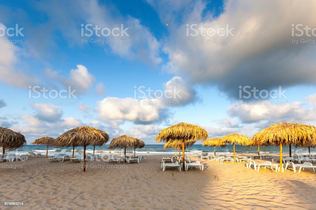 Golden Sunshades on the Beach stock photo
