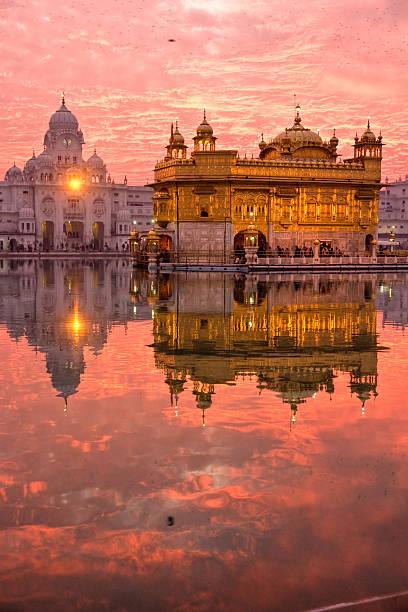 goldener tempel, amritsar, - goldener tempel stock-fotos und bilder