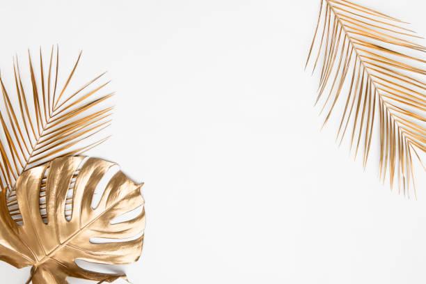 foglie tropicali dorate su sfondo bianco - flat lay foto e immagini stock