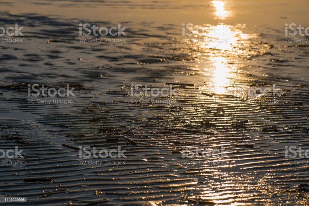the sun illuminates the sandy shore after the low tide
