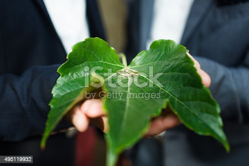 490225014istockphoto Golden wedding rings on green leaf 495119932