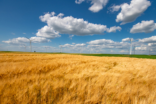 Wind turbines on a beautiful field and blue sky with clouds