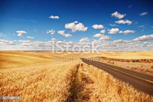 istock Golden wheat field, road through, blue sky 507546473