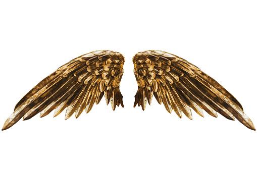 istock Golden wings 900954466