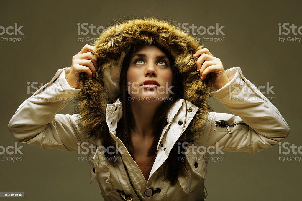 Golden winter royalty-free stock photo
