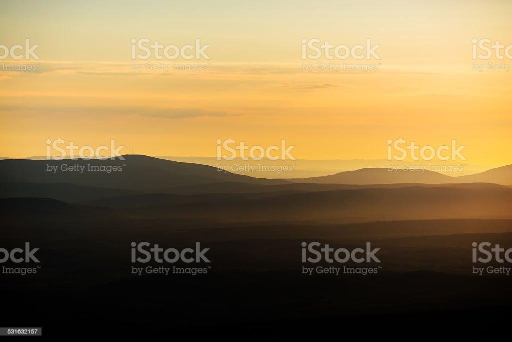 Golden_Ozark stock photo