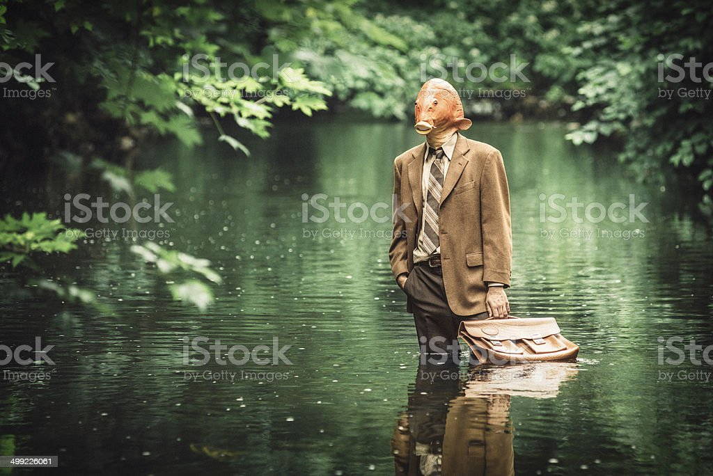 Goldfish Businessman stock photo