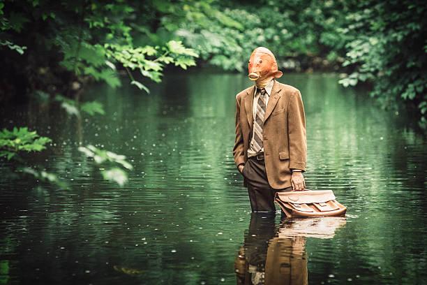 poisson rouge homme d'affaires - valise humour photos et images de collection