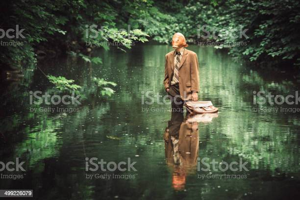 Goldfish businessman picture id499226079?b=1&k=6&m=499226079&s=612x612&h=czmcsc9bvrnnr4fe5 diqsg5vamnorvxb kxii6c0cm=