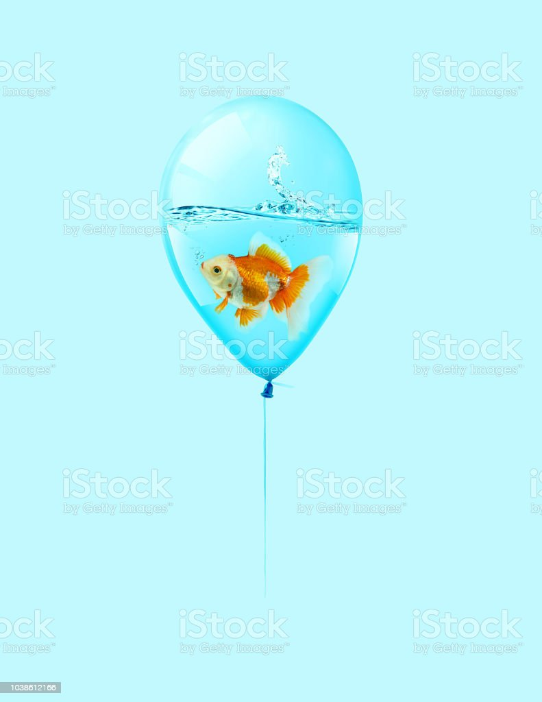 Goldfish Fly In Balloon Mixed Media Gold Fish Swimming In