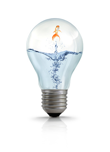 Goldfish In Light Bulb Stock Photo - Download Image Now