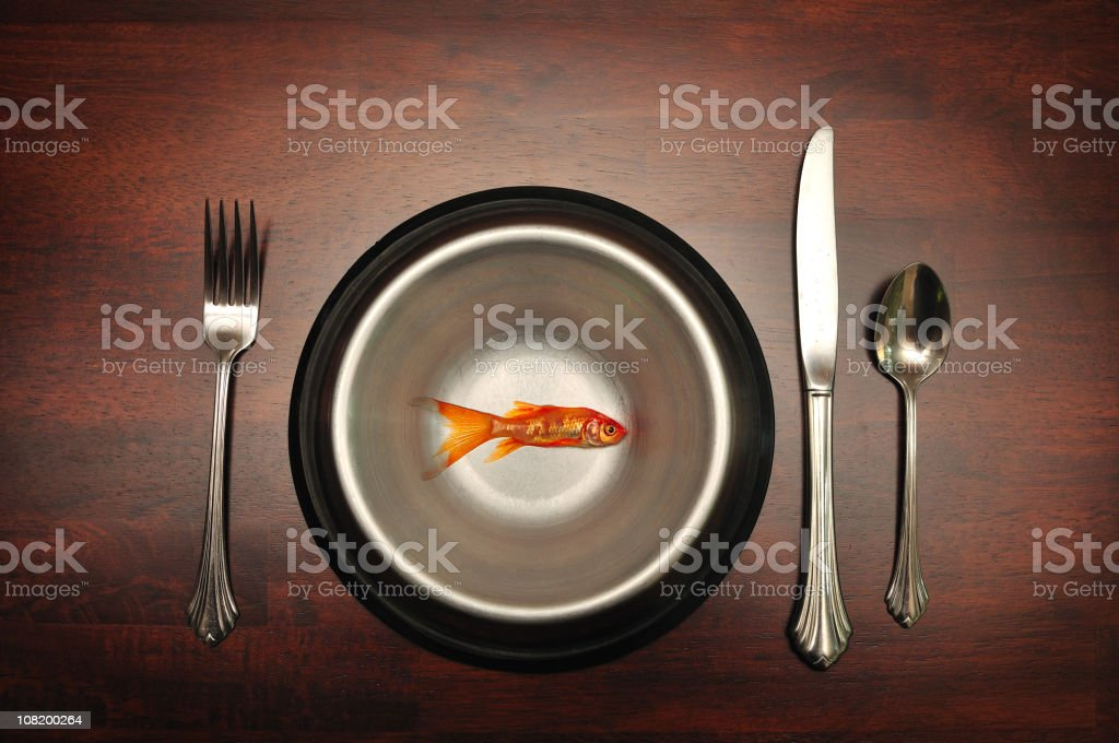 Goldfish in Pet Food Bowl with Cutlery Settting royalty-free stock photo