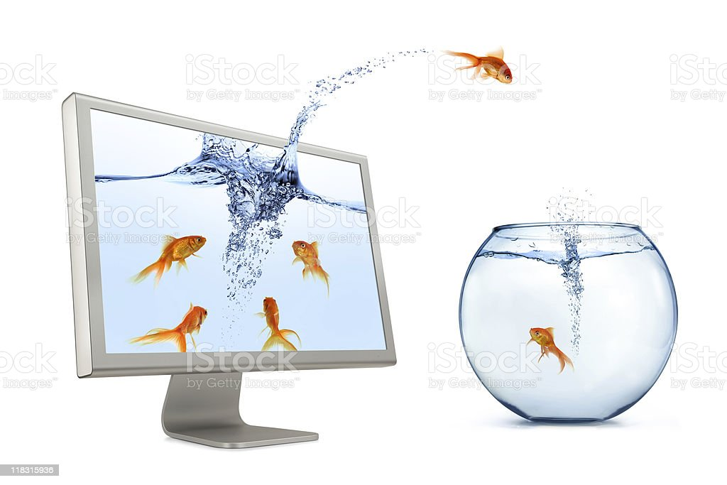 Goldfish Jumping Out Of Screen stock photo
