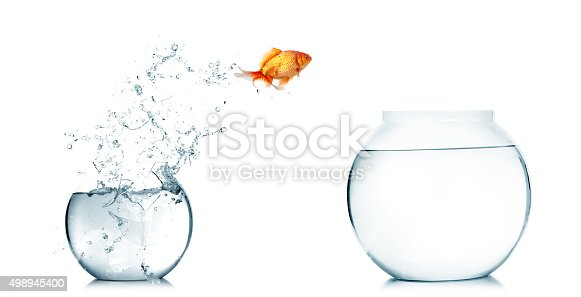 istock Goldfish jumping out of the fishbowl 498945400