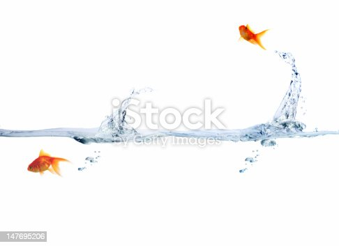 istock Goldfish leaping out of water 147695206