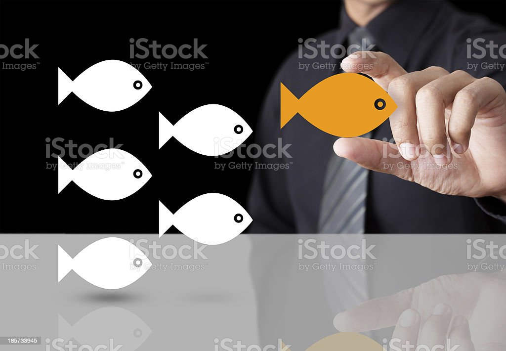 Goldfish showing leader individuality success concept stock photo