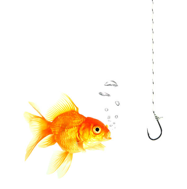 golds fish and metal empty hook stock photo