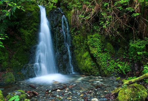 istock Goldstream Provincial Park - Hidden Spring Fall 153701041