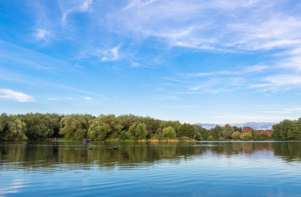 Goldsworth Park lake in summer time. stock photo