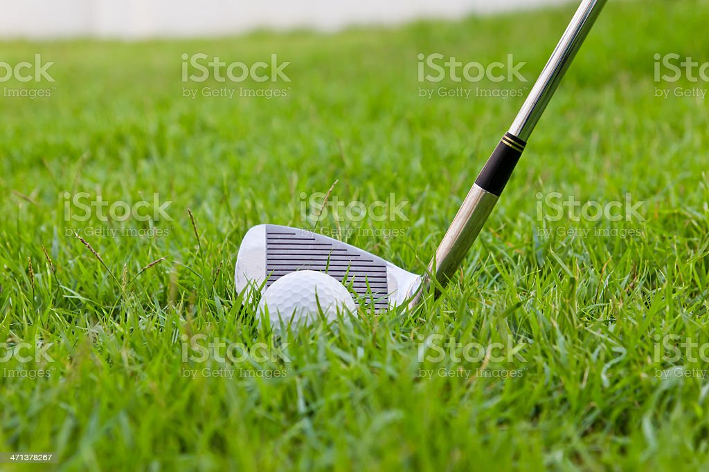 golf ball and iron on tall grass royalty-free stock photo