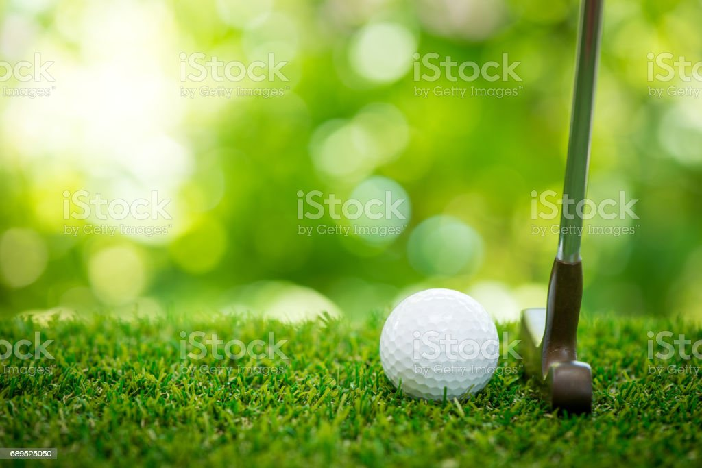 golf ball and putter on green stock photo