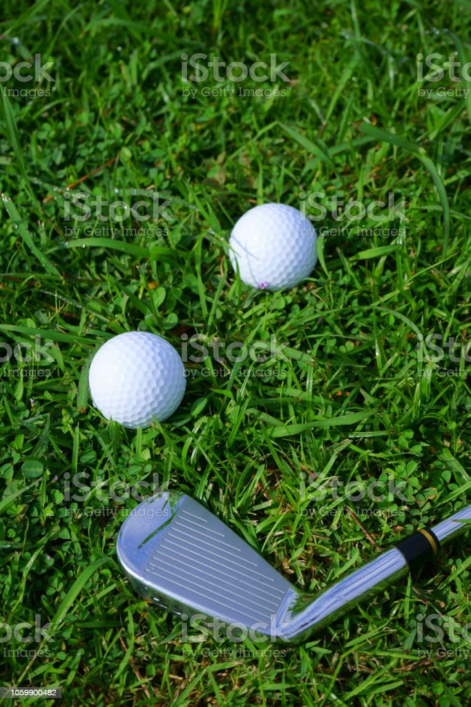 Golf ball and tee on golf green course background, copy space