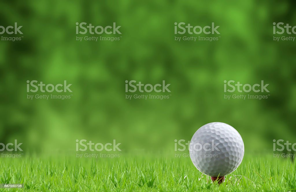 golf ball and tee on green grass stock photo
