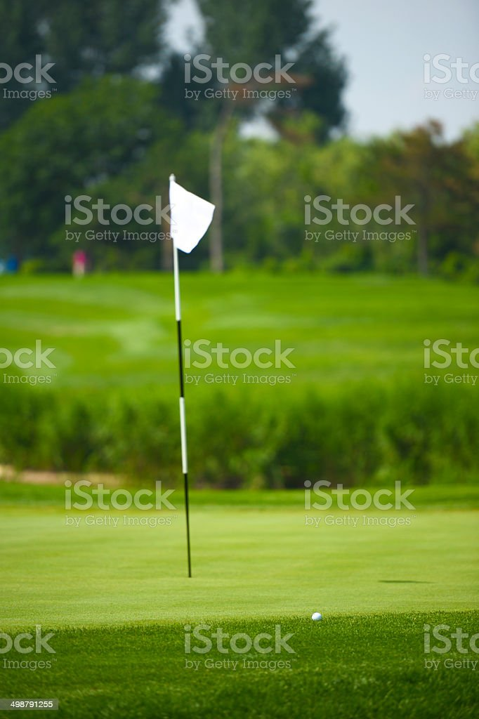 Golf Ball In Front Of Golf Flag stock photo