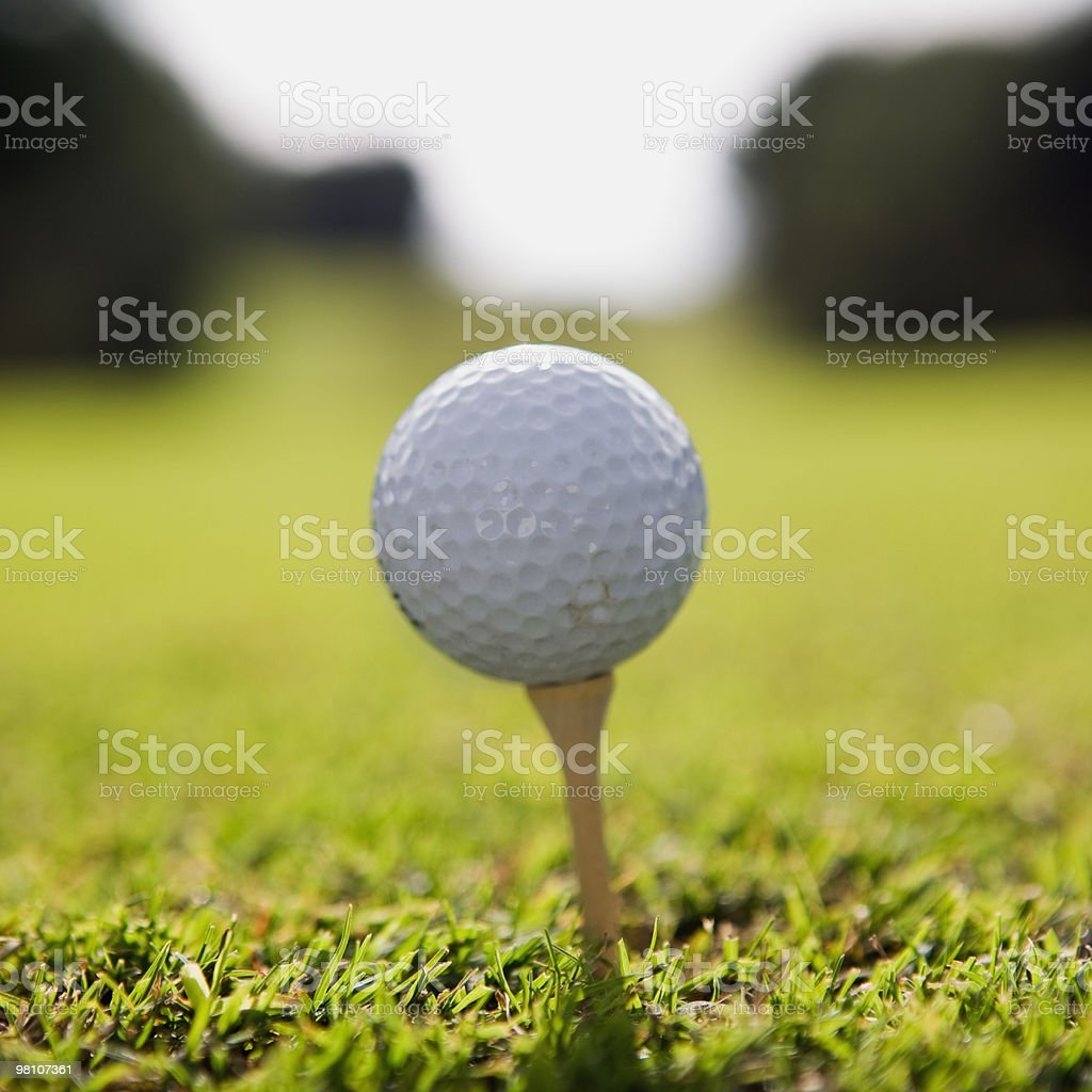 Golf ball in grass on pegg royalty-free stock photo