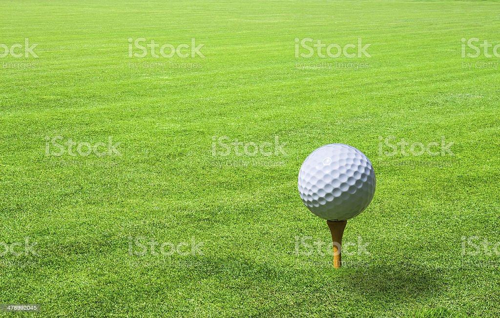 golf ball in green grass stock photo