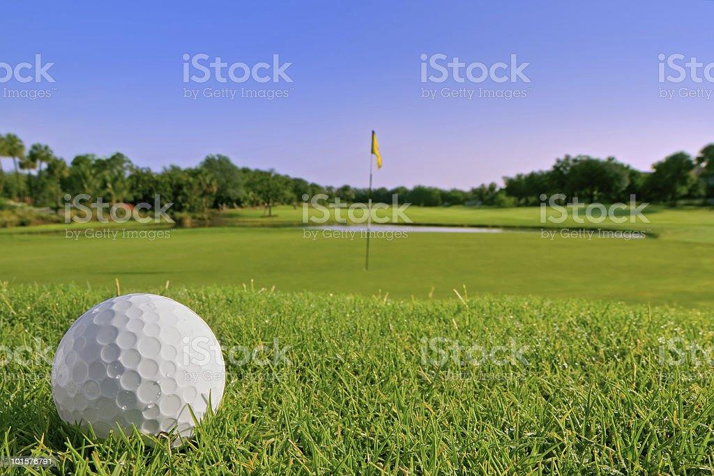 golf ball lies just above green stock photo
