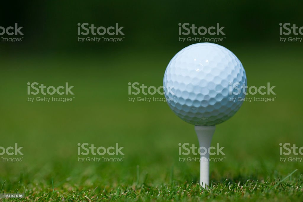 golf ball on a white tee stock photo