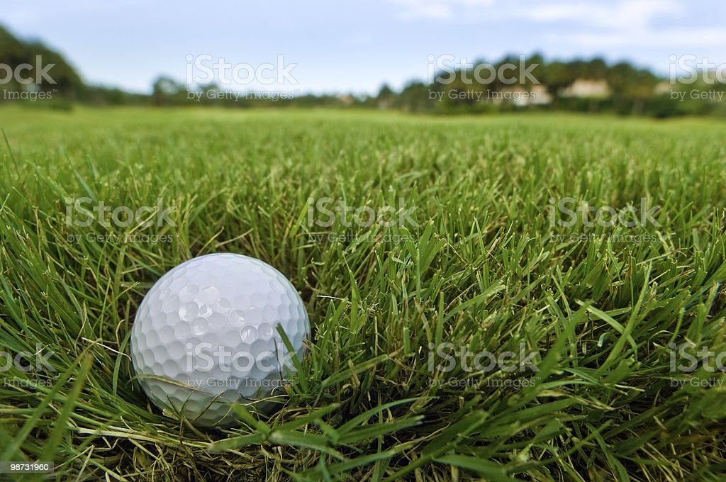 golf ball on fairway grass turf royalty-free stock photo