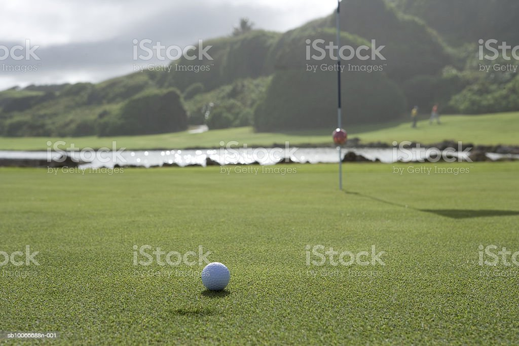 Golf ball on golf course, close-up royalty free stockfoto