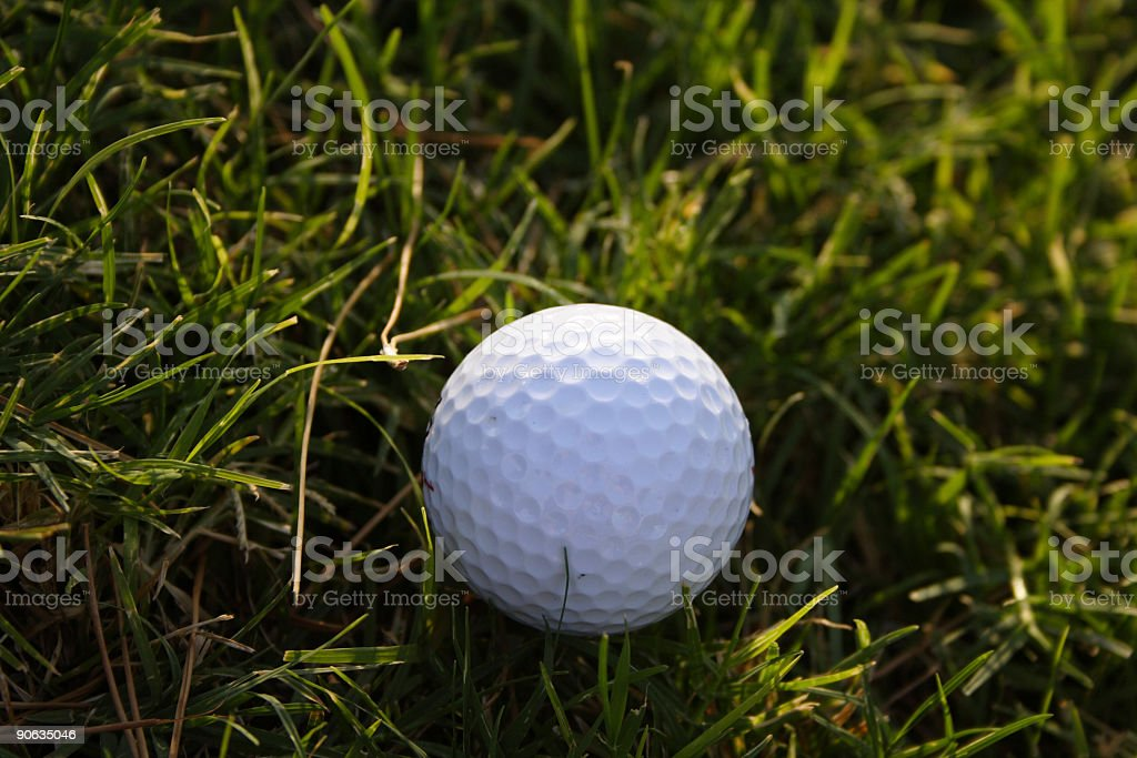 golf ball on grass royalty-free stock photo