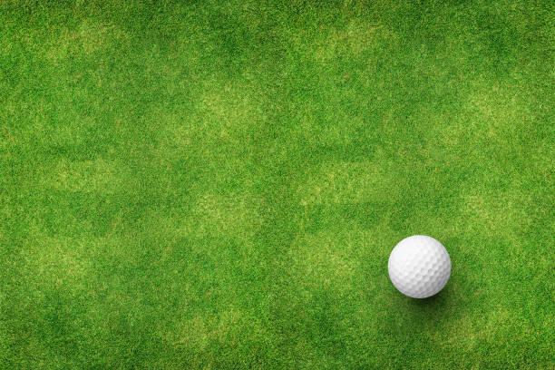 golf ball on grass top view - golf stock photos and pictures