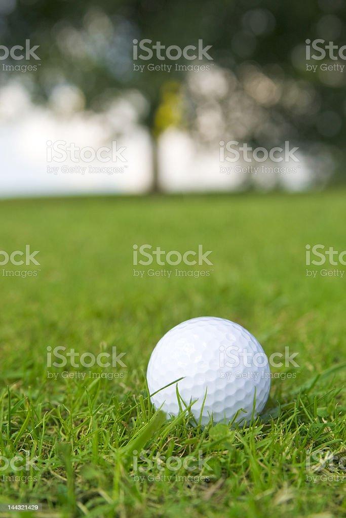 golf ball on green fairway royalty-free stock photo