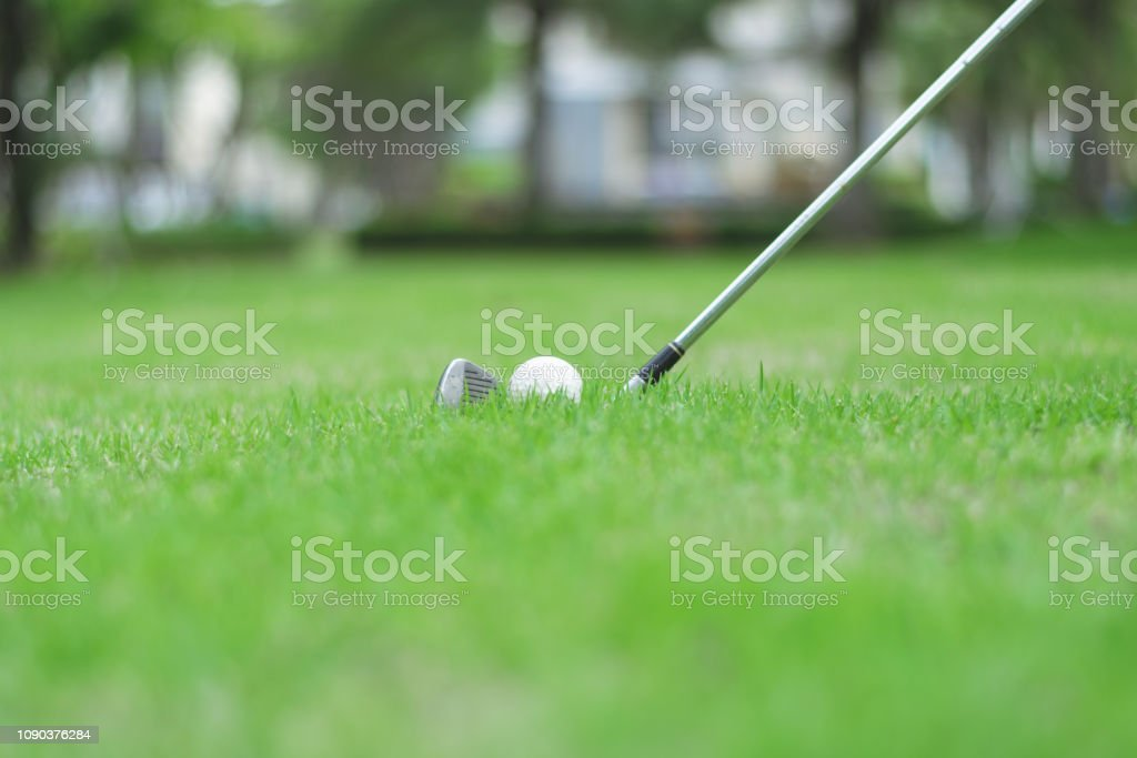 Close up to golf ball on green grass in golf course.