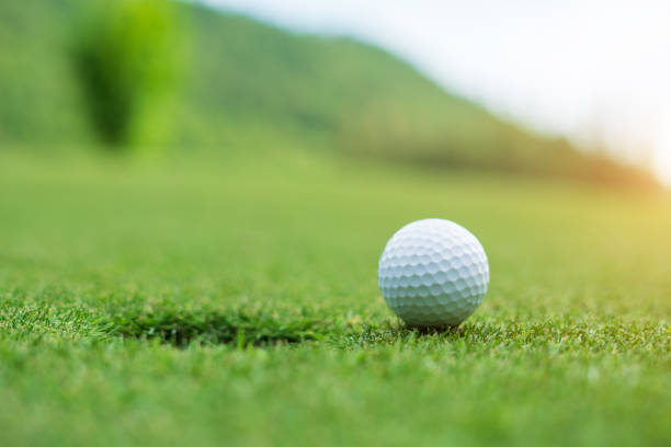 Golf ball on green grass ready to be struck at golf club stock photo