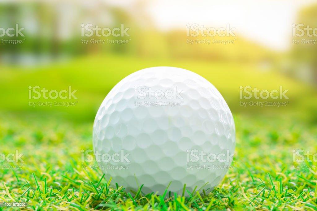 Golf ball on green grass sport outdoor play