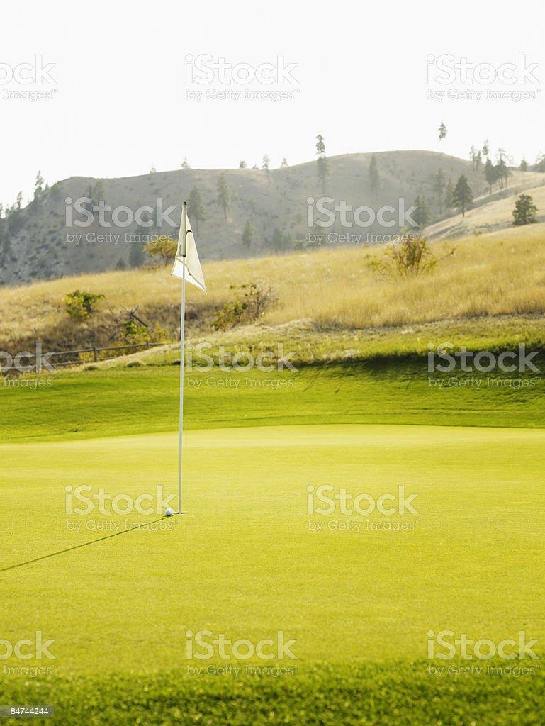 Golf ball on green near pin royalty-free stock photo