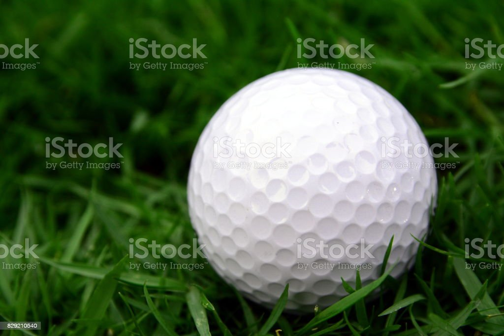 Golf Ball On Lawn Stock Photo & More Pictures of Ball | iStock