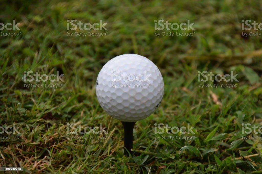 Golf ball on tee closeup fairway sport golfer tournament driving range
