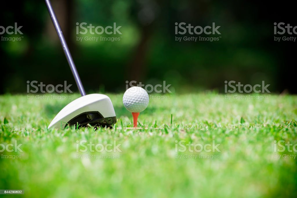 Golf ball on tee in front of golf driver on a gold course grass green...
