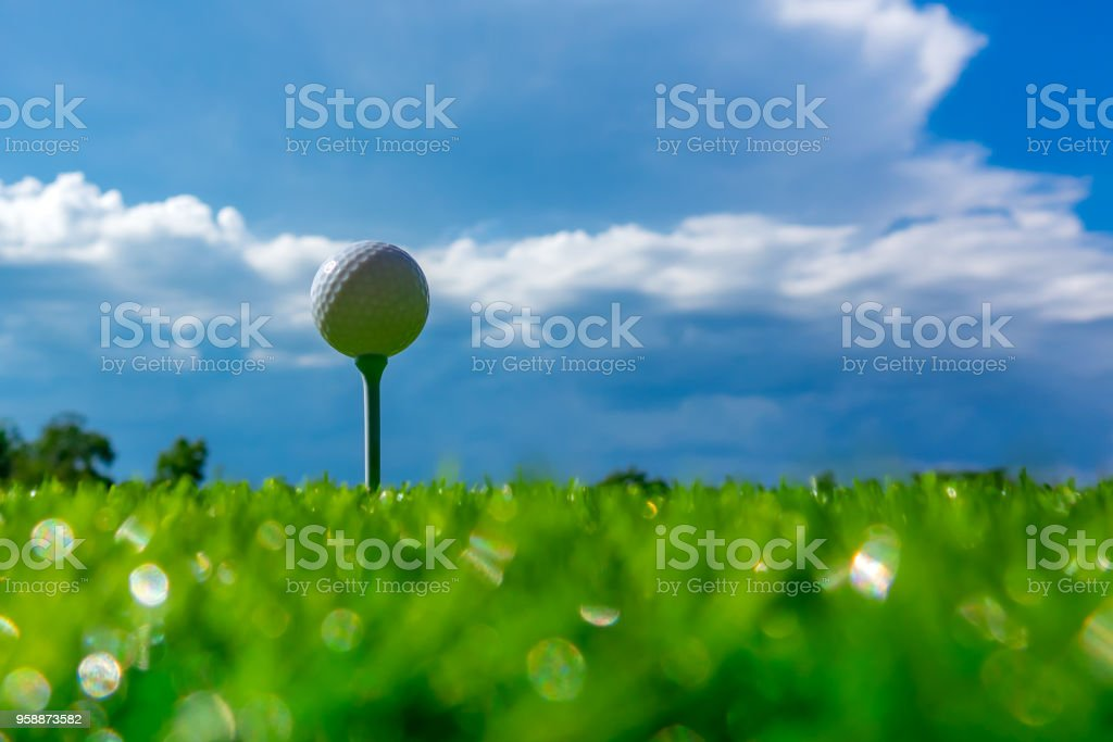 Golf ball on tee in golf course on sky blue and cloud