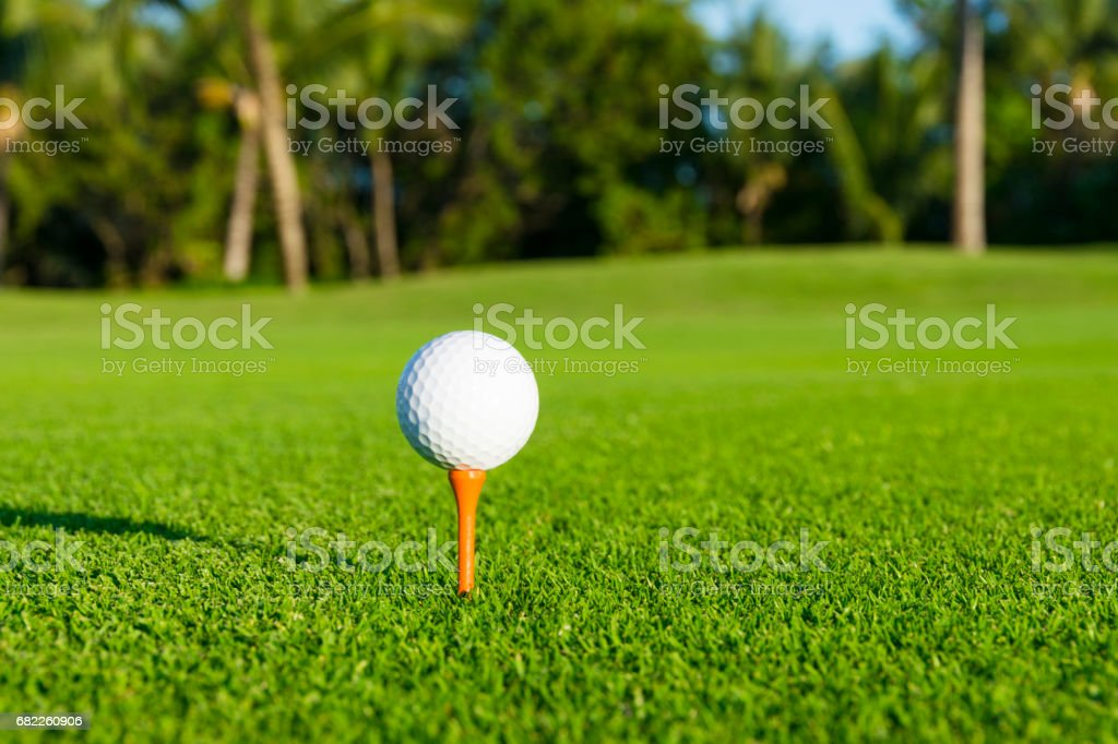 Golf ball on tee on golf course over a blurred green stock photo